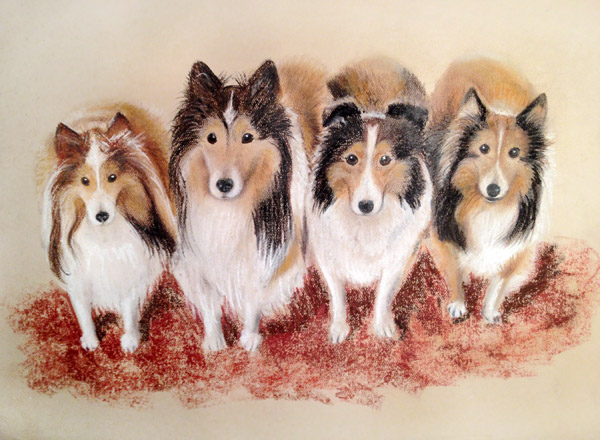People Amp Animal Portrait Drawings New Haven Ct Pastel