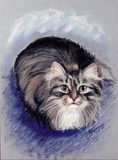 portrait drawing of a cat