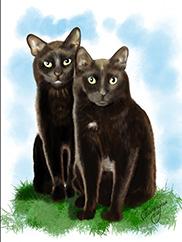 Digital Black Cats